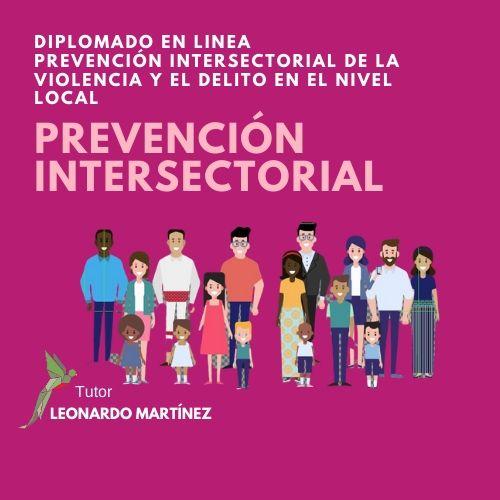 Diplomado en Prevención Intersectorial de la Violencia y el Delito en el Nivel Local